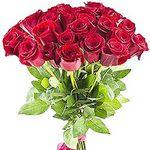 Импортные розы - flowers and bouquets on flora.lg.ua