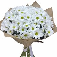 Bouquet of 25 chamomiles - flowers and bouquets on flora.lg.ua