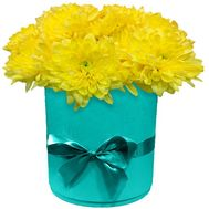 Chrysanthemums in a round box - flowers and bouquets on flora.lg.ua