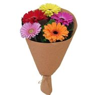 A small bouquet of gerberas in craft - flowers and bouquets on flora.lg.ua