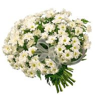A beautiful bouquet of white chamomiles - flowers and bouquets on flora.lg.ua