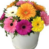 Bright box of gerberas - flowers and bouquets on flora.lg.ua