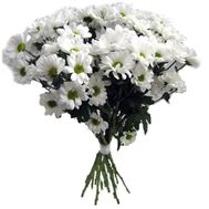 Bouquet of flowers - Lola - flowers and bouquets on flora.lg.ua