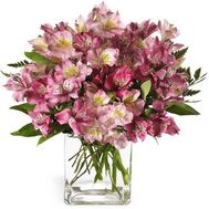 Bouquet of flowers - Matilda - flowers and bouquets on flora.lg.ua