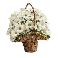 Flower basket - Barbie - flowers and bouquets on flora.lg.ua