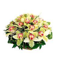Flower basket - Brenda - flowers and bouquets on flora.lg.ua